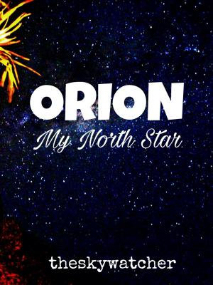 Orion My North Star